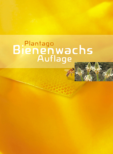 Ein Bogen Plantago Bienenwachs Auflage
